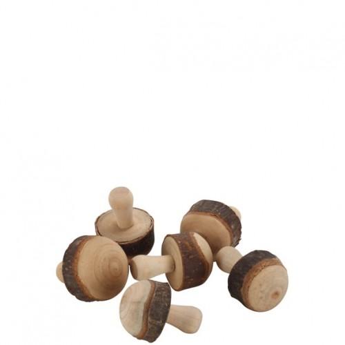 Holz Pilz